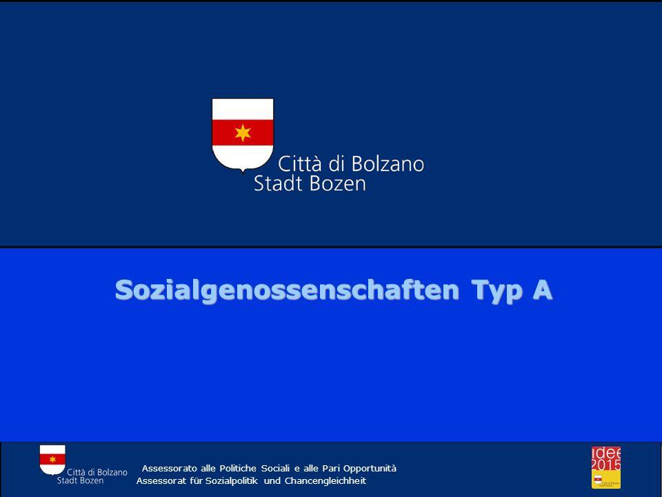 Sozialgenossenschaften Typ A