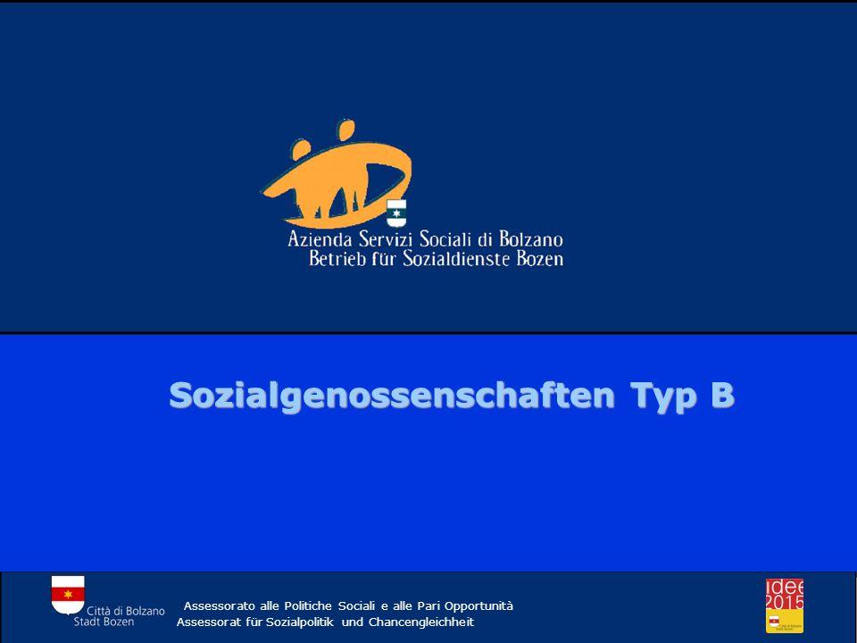 Sozialgenossenschaften Typ B
