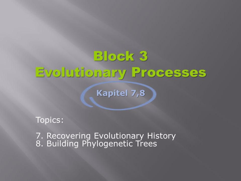 Evolutionary Processes