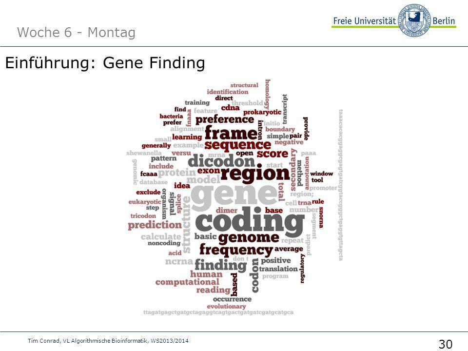Einführung: Gene Finding