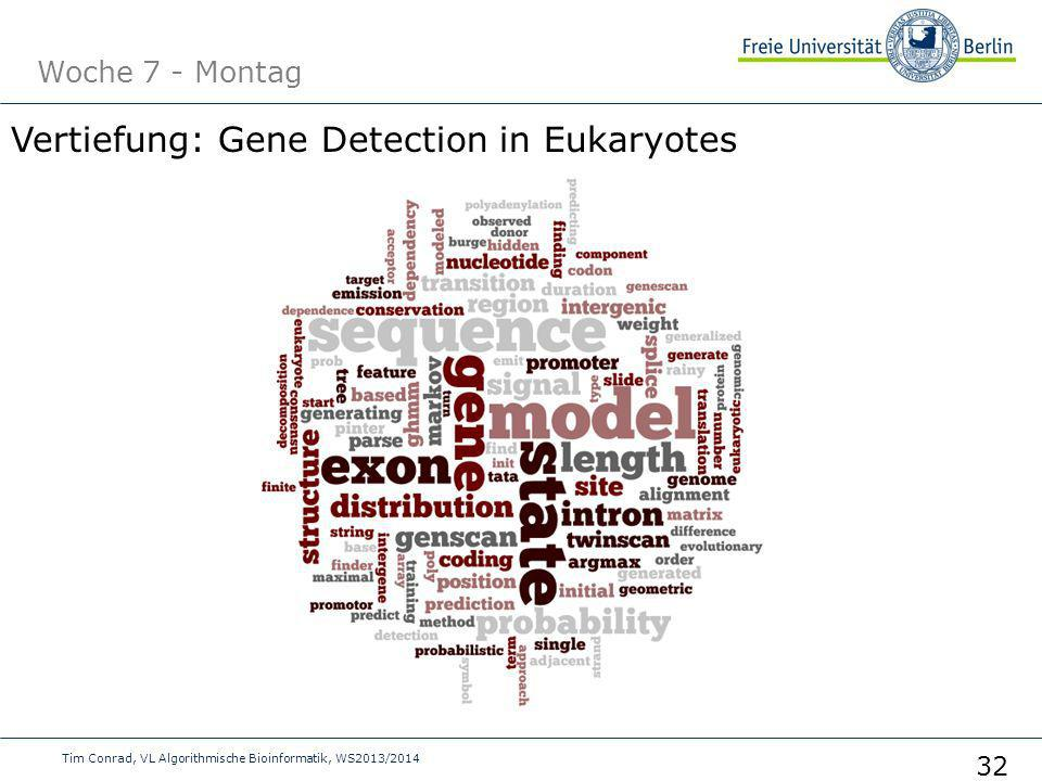 Vertiefung: Gene Detection in Eukaryotes