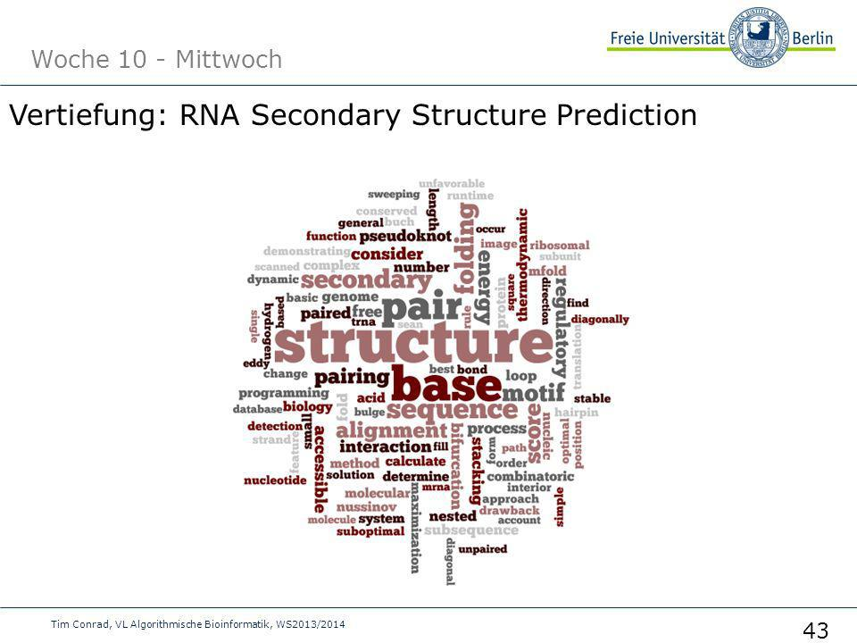 Vertiefung: RNA Secondary Structure Prediction