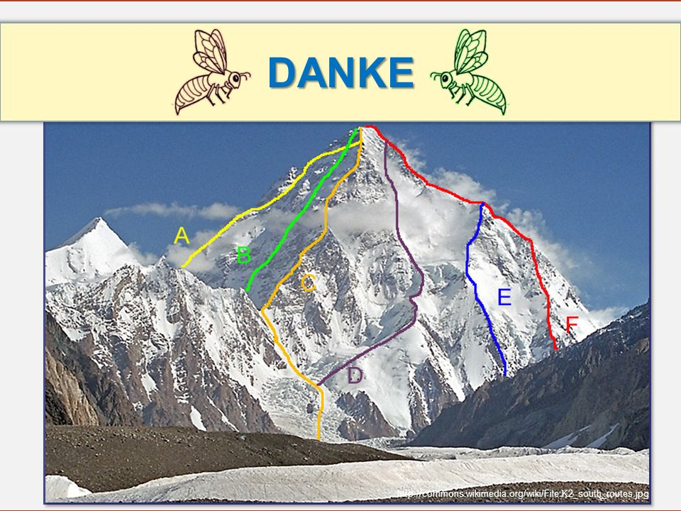 DANKE http://commons.wikimedia.org/wiki/File:K2_south_routes.jpg