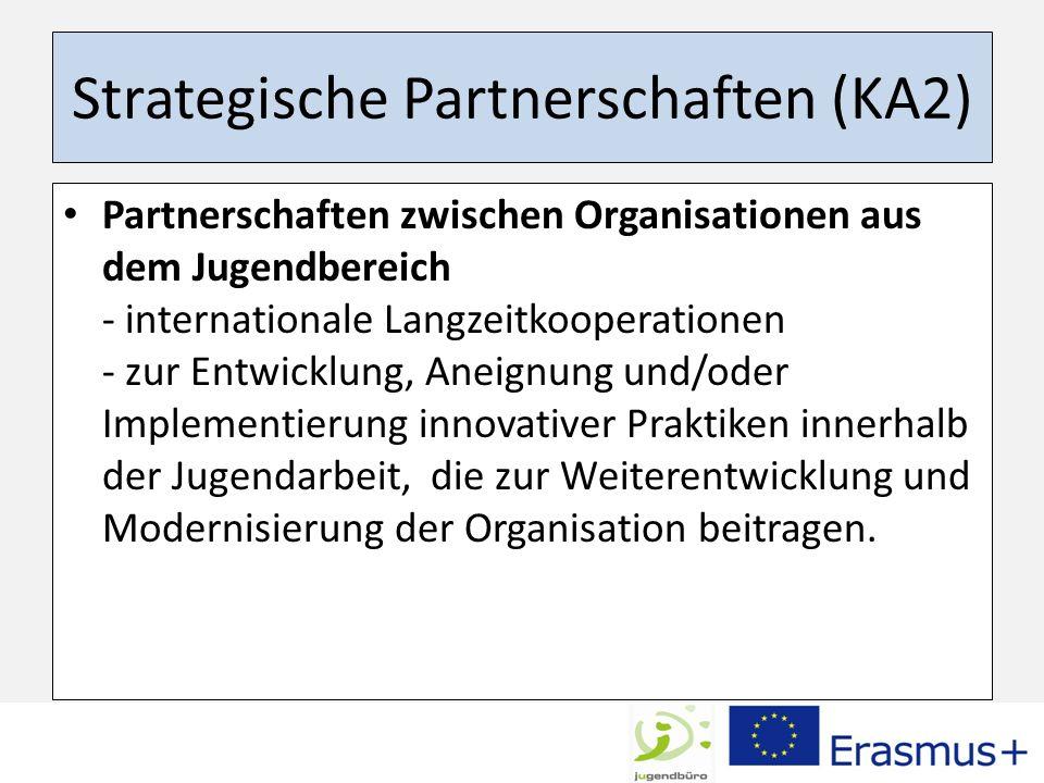 Strategische Partnerschaften (KA2)
