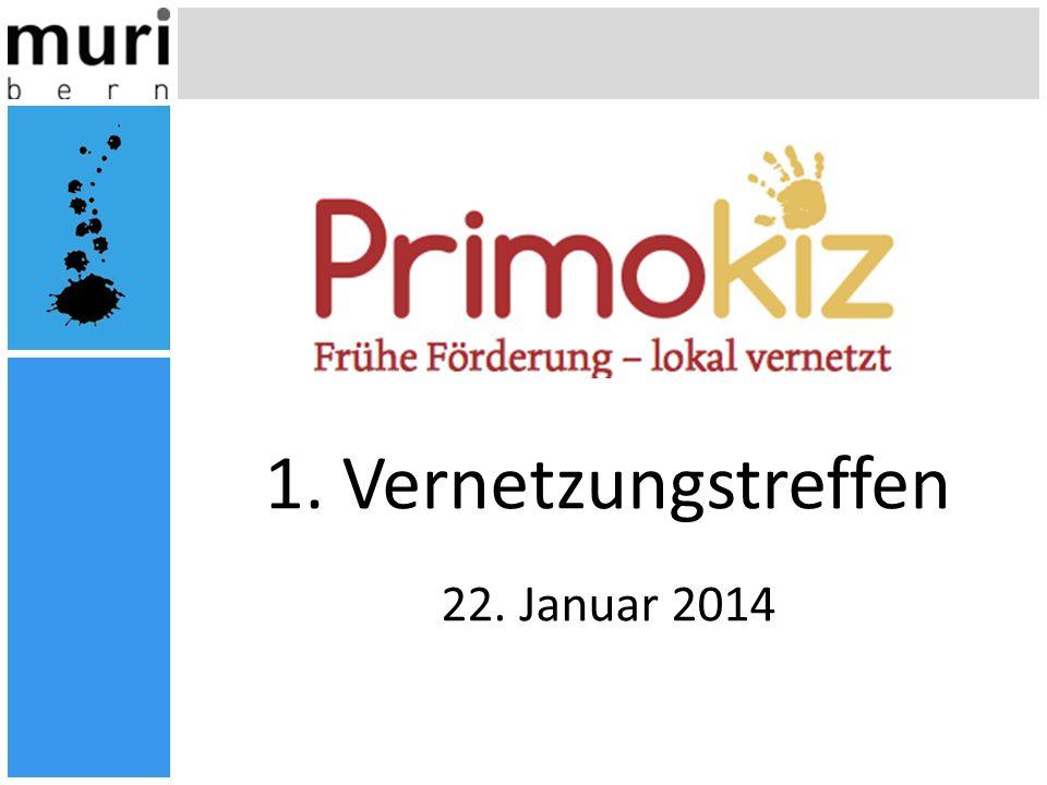 1. Vernetzungstreffen 22. Januar 2014