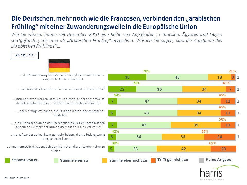 """Die Deutschen, mehr noch wie die Franzosen, verbinden den """"arabischen Frühling mit einer Zuwanderungswelle in die Europäische Union"""
