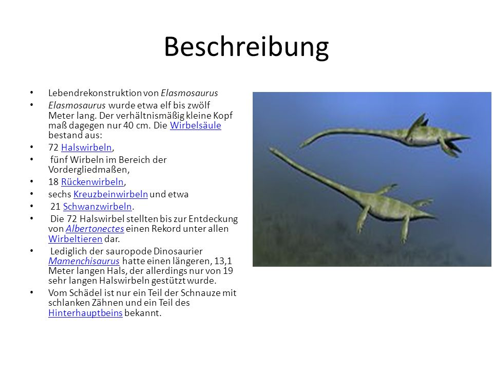 Beschreibung Lebendrekonstruktion von Elasmosaurus