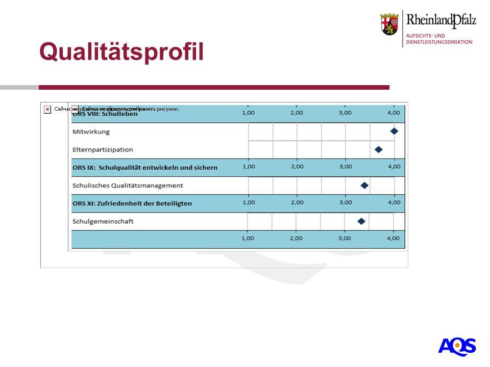 Qualitätsprofil Datengrundlage aus dem aktuellen Bericht einfügen!