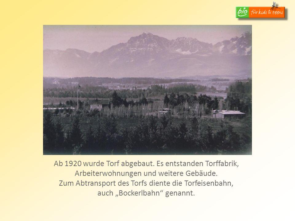 Ab 1920 wurde Torf abgebaut. Es entstanden Torffabrik, Arbeiterwohnungen und weitere Gebäude.