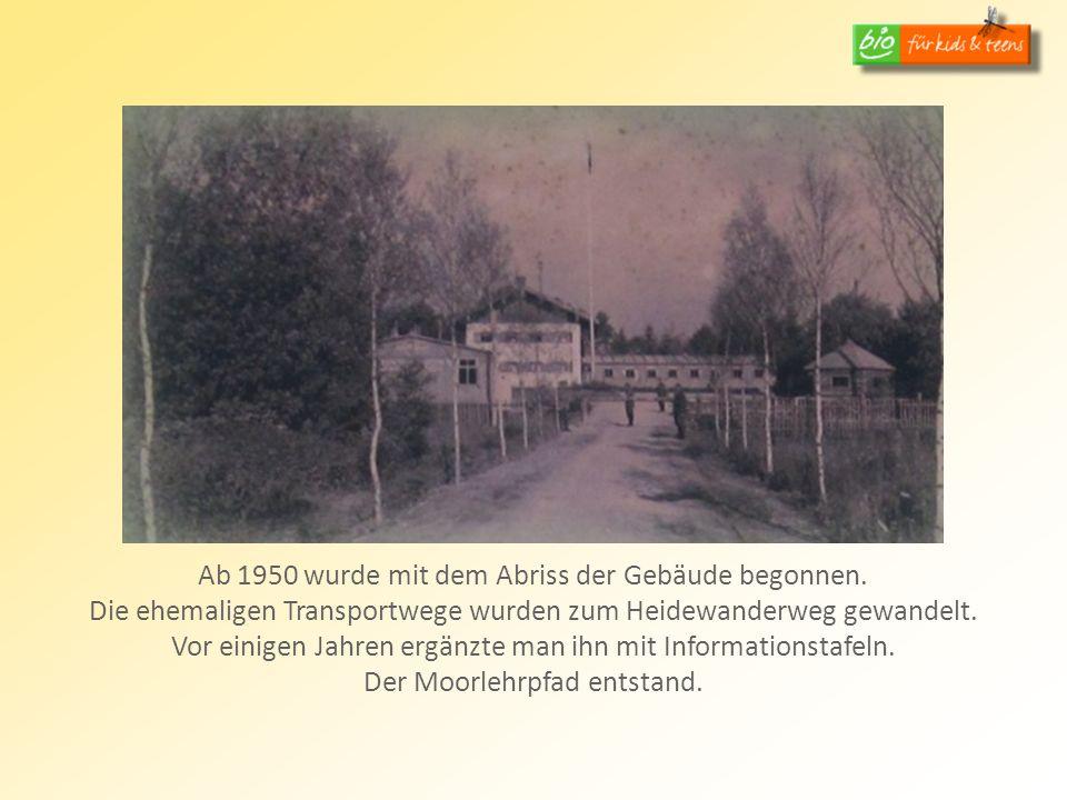Ab 1950 wurde mit dem Abriss der Gebäude begonnen