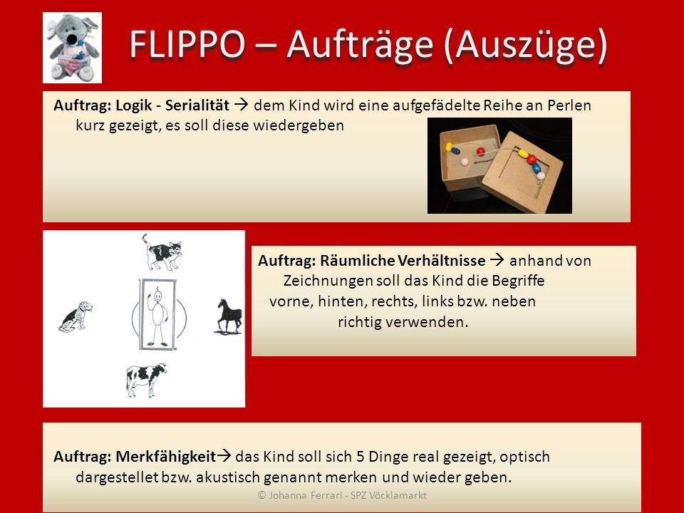 FLIPPO – Aufträge (Auszüge)
