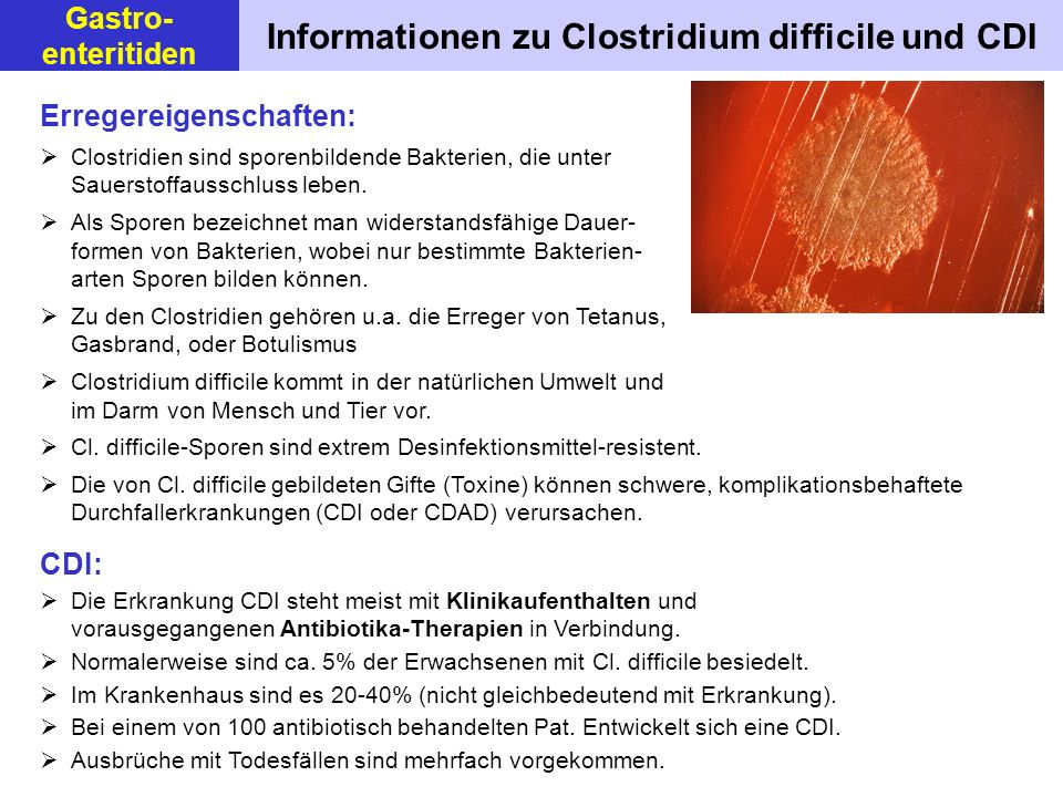 Informationen zu Clostridium difficile und CDI