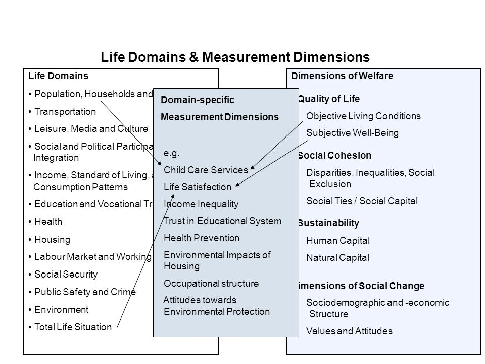 Life Domains & Measurement Dimensions