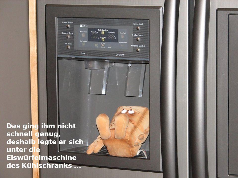 Das ging ihm nicht schnell genug, deshalb legte er sich unter die Eiswürfelmaschine des Kühlschranks ...