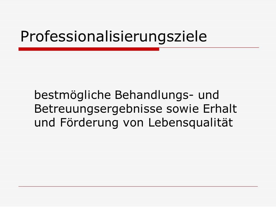 Professionalisierungsziele