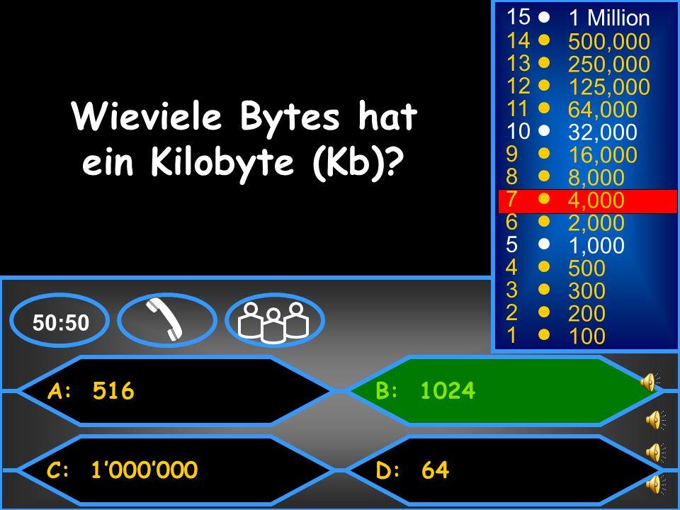 Wieviele Bytes hat ein Kilobyte (Kb)