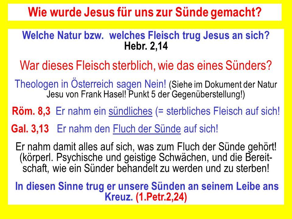 Wie wurde Jesus für uns zur Sünde gemacht