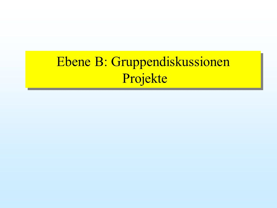 Ebene B: Gruppendiskussionen Projekte
