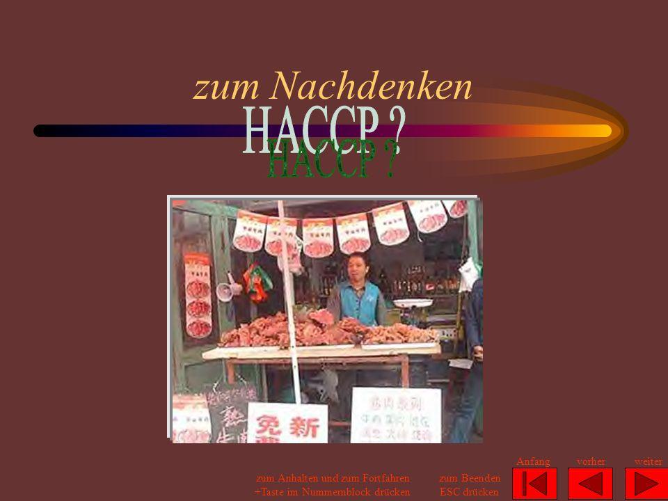 zum Nachdenken HACCP Anfang vorher weiter