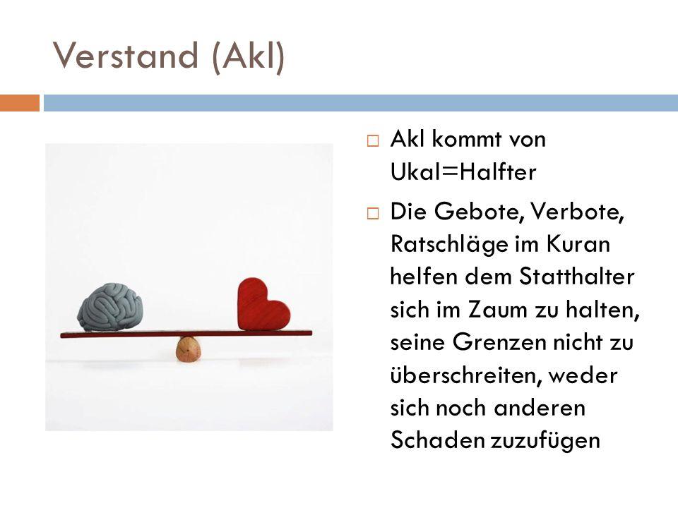 Verstand (Akl) Akl kommt von Ukal=Halfter