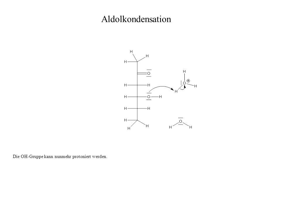Aldolkondensation Die OH-Gruppe kann nunmehr protoniert werden.