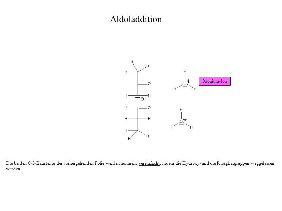 Aldoladdition Oxonium-Ion
