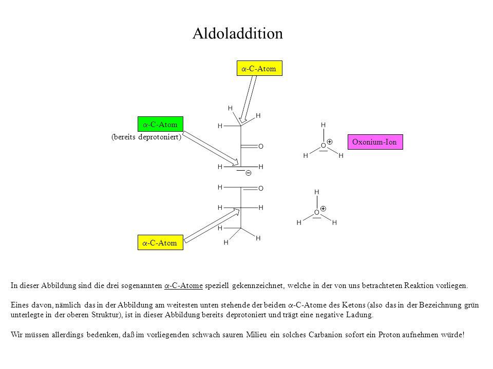 Aldoladdition a-C-Atom a-C-Atom (bereits deprotoniert) Oxonium-Ion