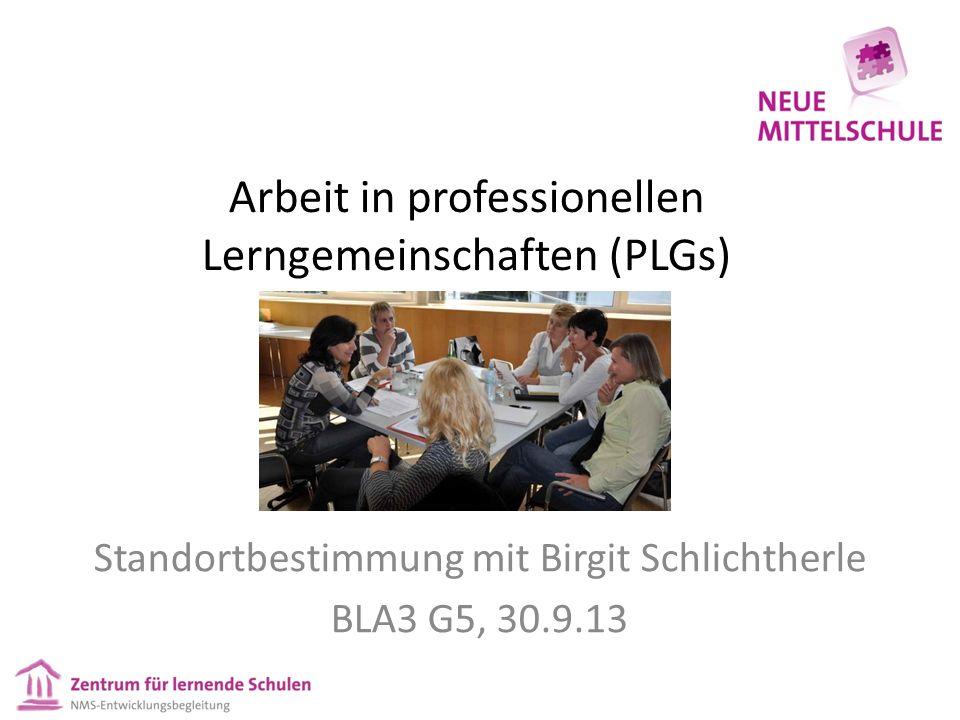 Arbeit in professionellen Lerngemeinschaften (PLGs)