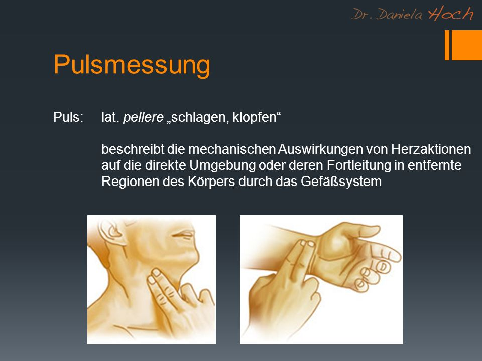 """Pulsmessung Puls: lat. pellere """"schlagen, klopfen"""