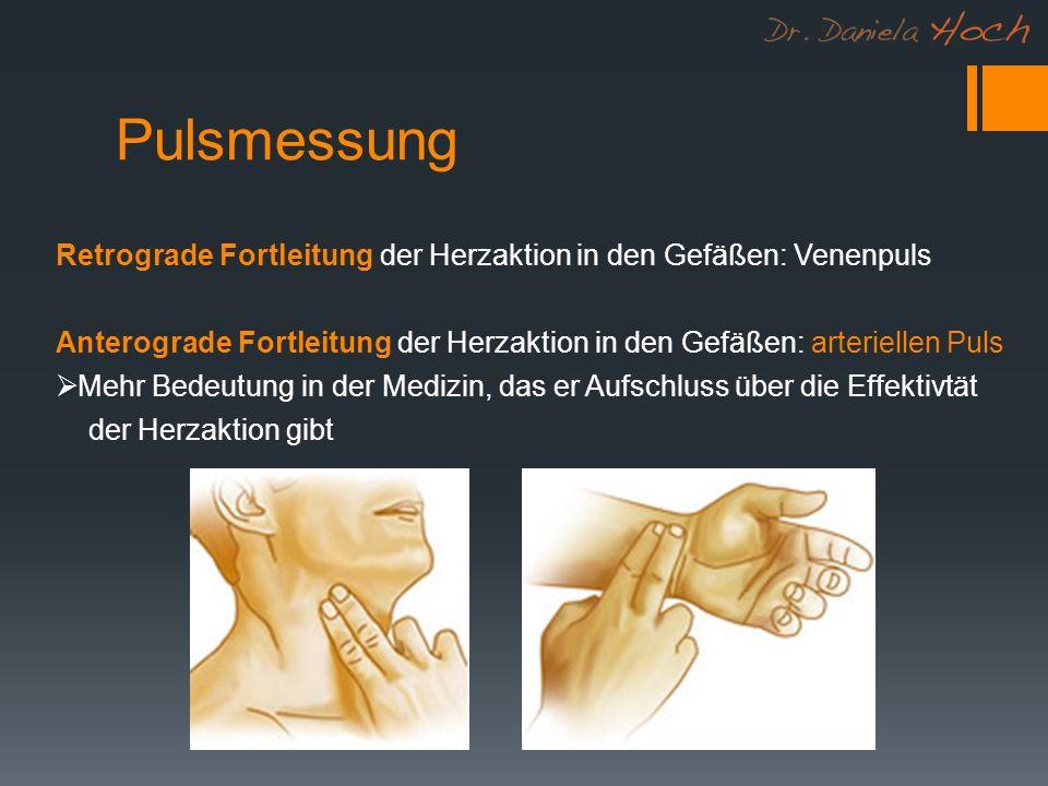 Pulsmessung Retrograde Fortleitung der Herzaktion in den Gefäßen: Venenpuls. Anterograde Fortleitung der Herzaktion in den Gefäßen: arteriellen Puls.