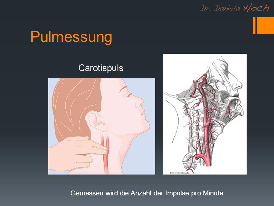 Pulmessung Carotispuls Gemessen wird die Anzahl der Impulse pro Minute