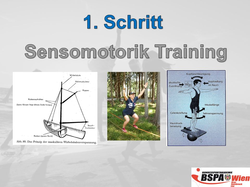 Sensomotorik Training