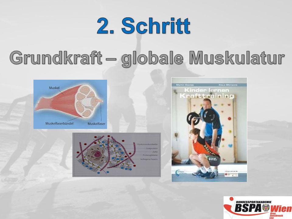 Grundkraft – globale Muskulatur