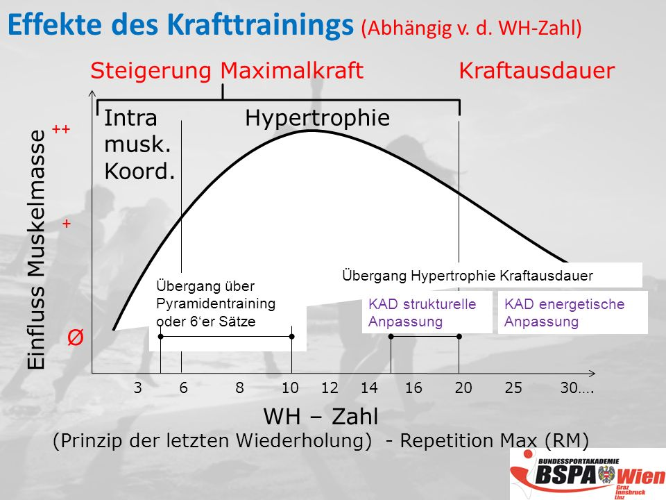 Effekte des Krafttrainings (Abhängig v. d. WH-Zahl)
