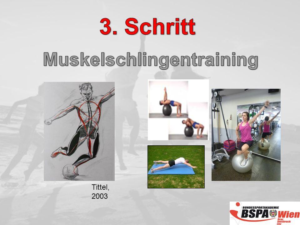 Muskelschlingentraining