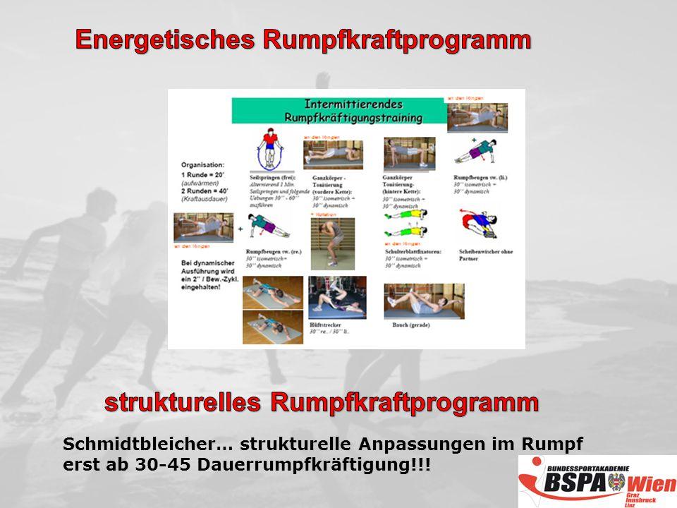 Energetisches Rumpfkraftprogramm strukturelles Rumpfkraftprogramm