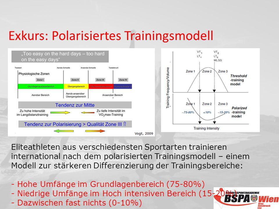 Exkurs: Polarisiertes Trainingsmodell