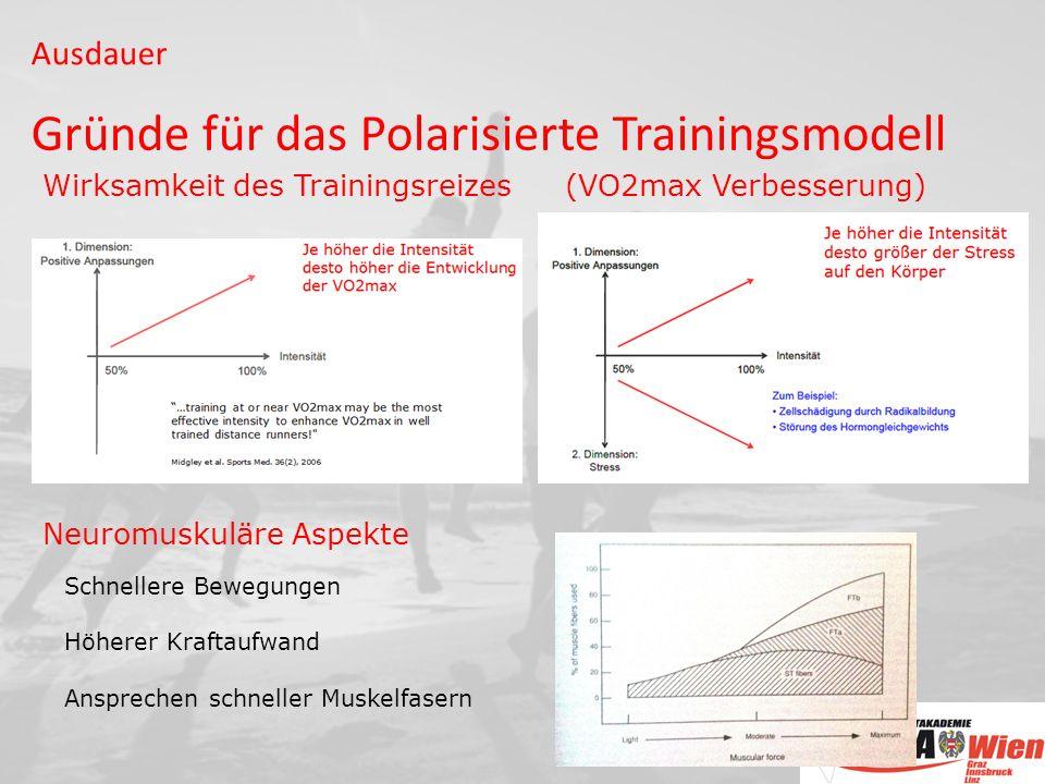 Gründe für das Polarisierte Trainingsmodell