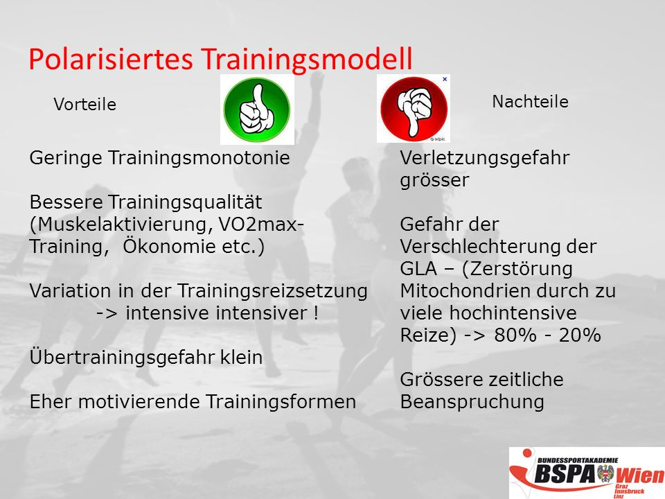 Polarisiertes Trainingsmodell