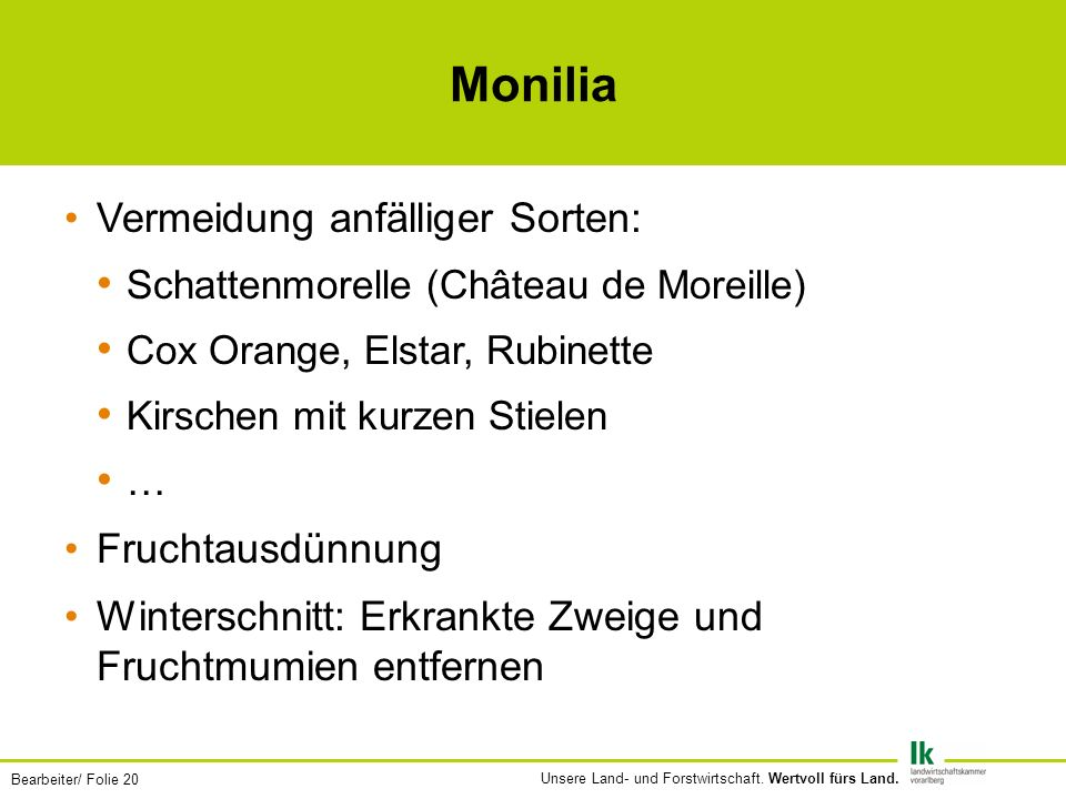Monilia Vermeidung anfälliger Sorten: Fruchtausdünnung
