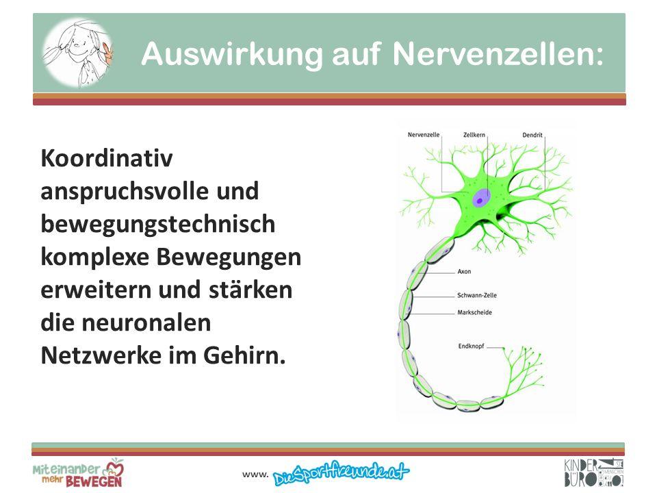 Auswirkung auf Nervenzellen: