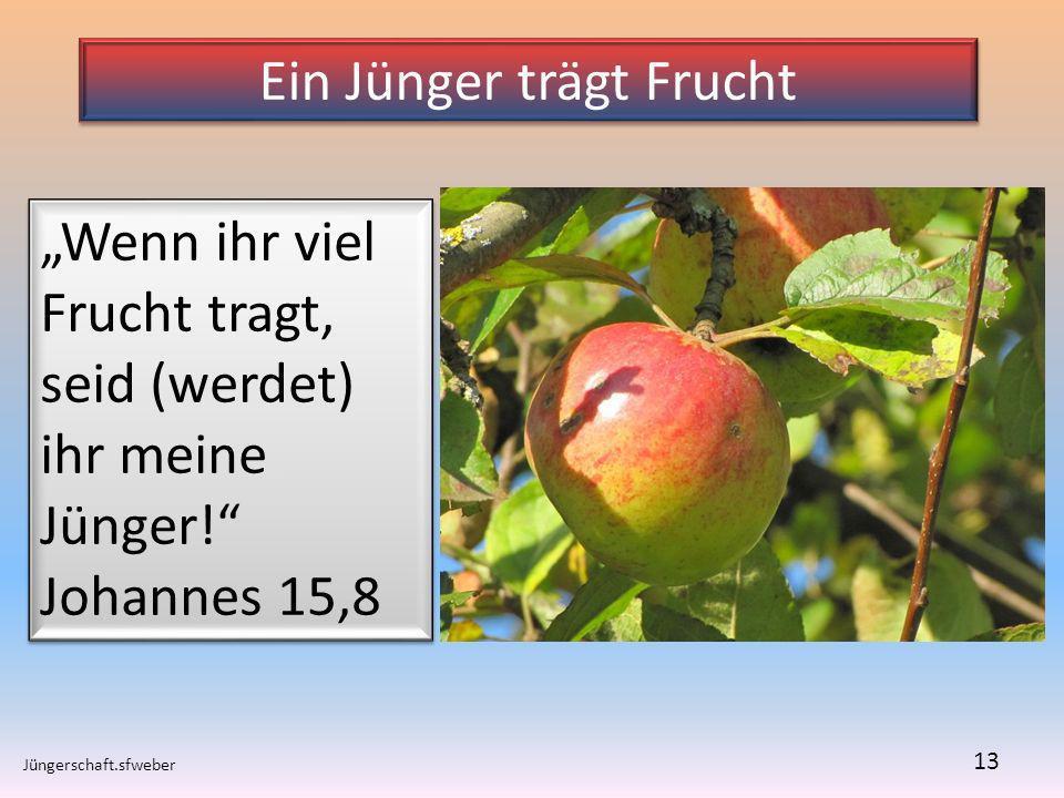 Ein Jünger trägt Frucht