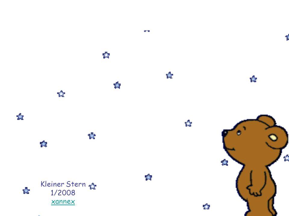 Kleiner Stern 1/2008 xannex
