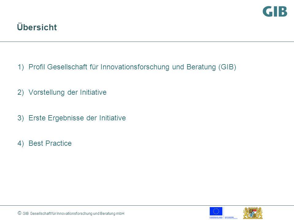 Übersicht Profil Gesellschaft für Innovationsforschung und Beratung (GIB) Vorstellung der Initiative.