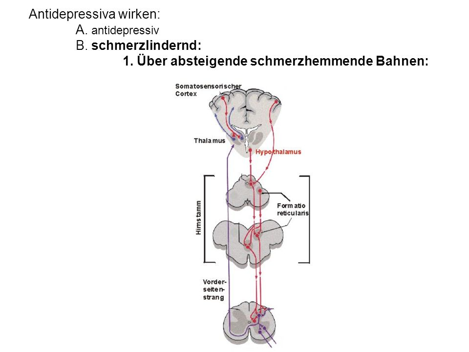 Antidepressiva wirken:. A. antidepressiv. B. schmerzlindernd:. 1