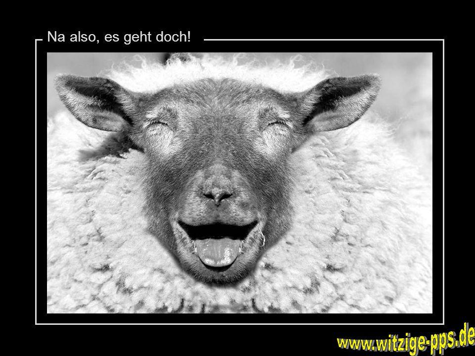 Na also, es geht doch! www.witzige-pps.de