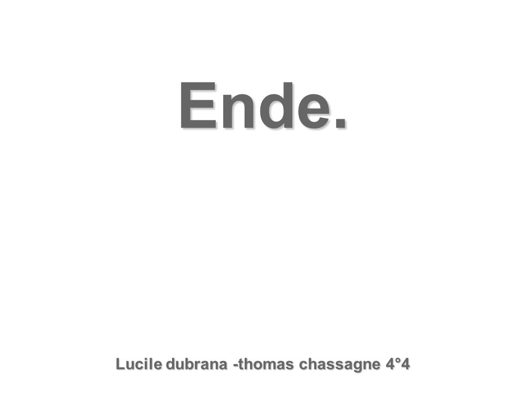Lucile dubrana -thomas chassagne 4°4
