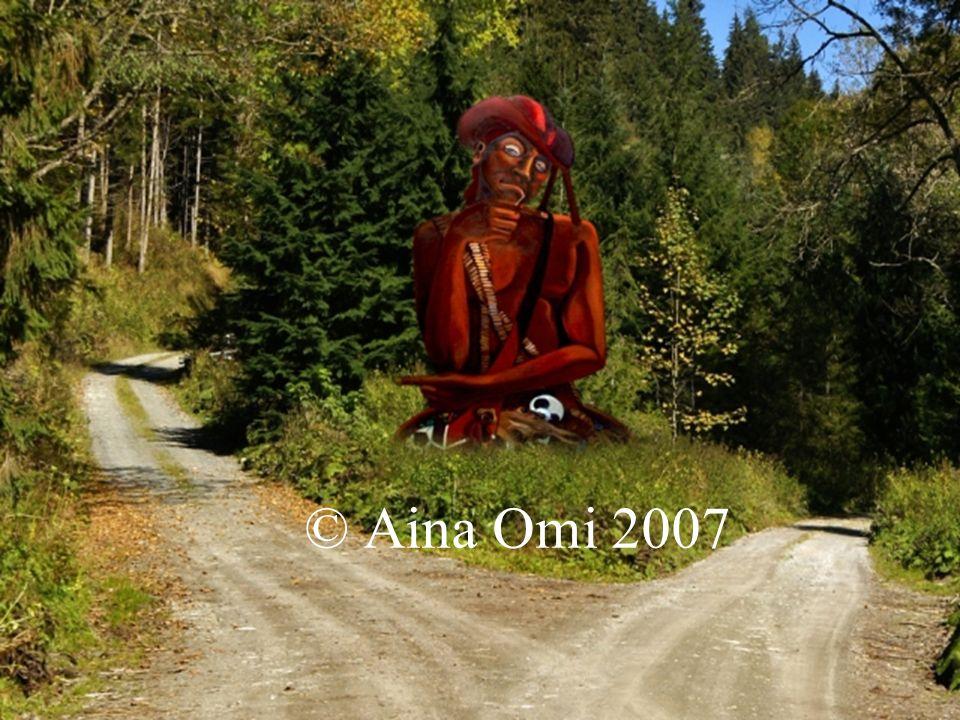 © Aina Omi 2007