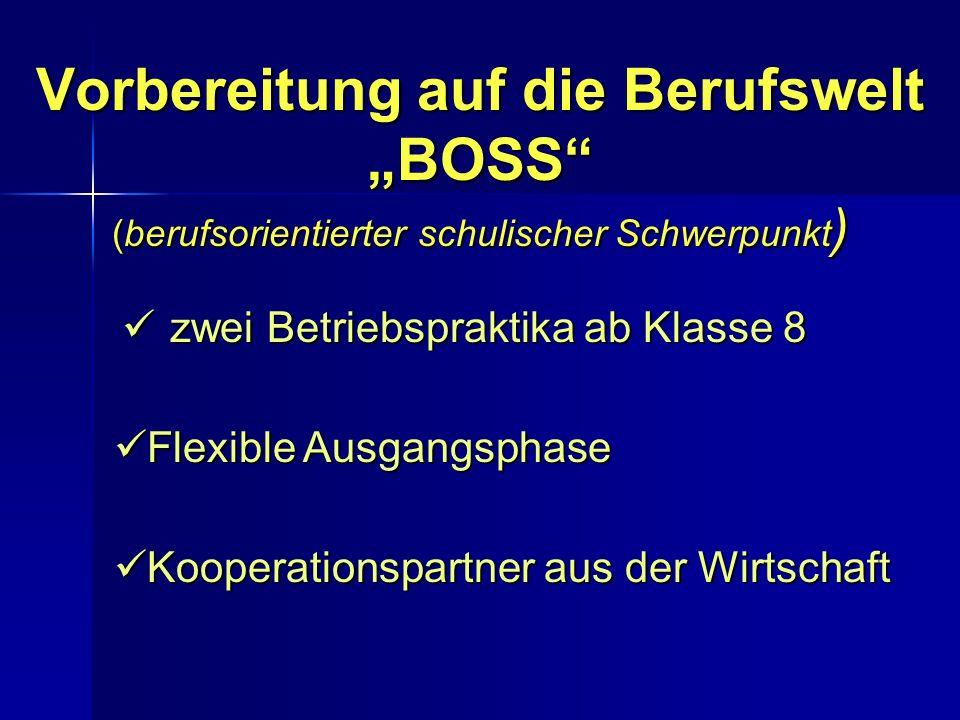 """Vorbereitung auf die Berufswelt """"BOSS (berufsorientierter schulischer Schwerpunkt)"""