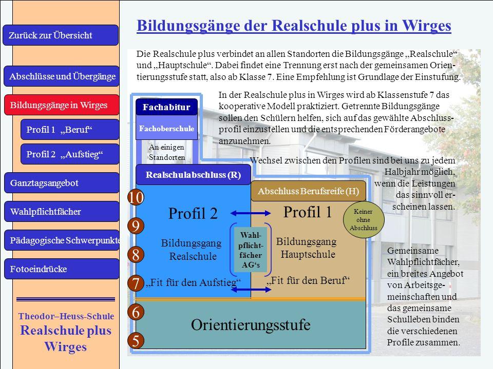 Bildungsgänge der Realschule plus in Wirges